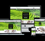 Wordpress Free Theme - WS Teaime – Free Responsive Tea Shop Woocommerce Wordpress Theme