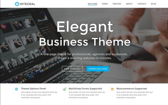 Wordpress Theme: Integral