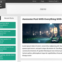 mythemeshop Wordpress Theme: DualShock