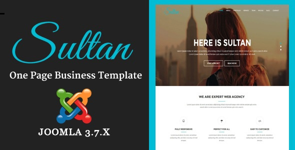 Joomla Template: Sultan - One Page Business Multi-Purpose Joomla Theme