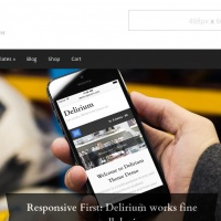 wpzoom Wordpress Theme: Delirium