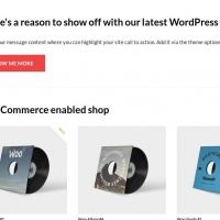 woothemes Wordpress Theme: Show Off