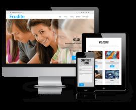 admin Wordpress Theme: Erudite - WordPress  Education Theme