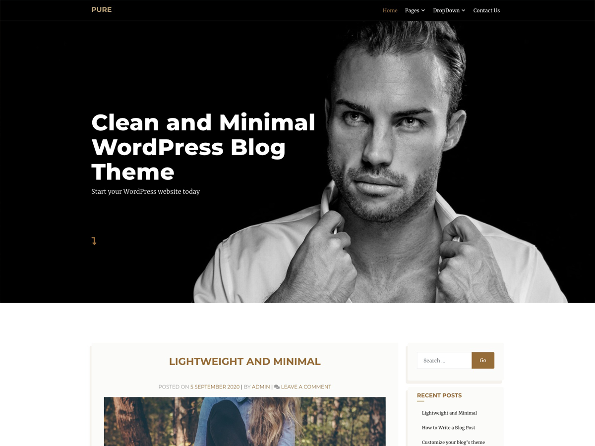 Wordpress Theme: Pure