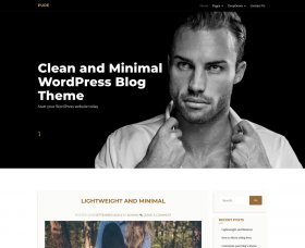 Wordpress Themes: Pure
